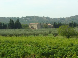 Baux de Provence, vinhedos, França