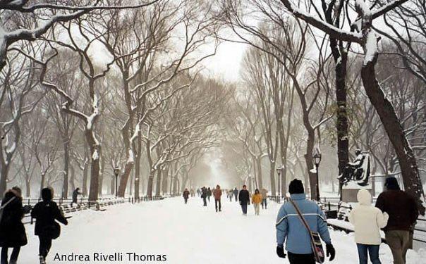 Central Park no inverno, em Manhattan, New York