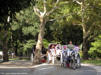 Passeios de carruagem no Central Park em Nova York