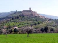 Umbria, vinhedos em propriedade rural