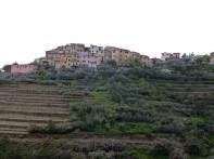 Vinícolas em Cinque Terra, Itália