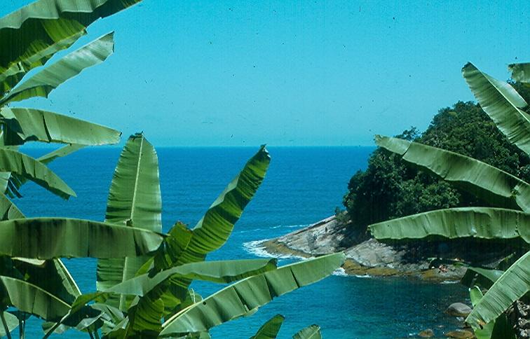Vista da Rio-Santos perto de Ubatuba