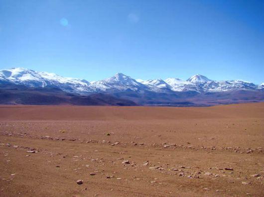 Altiplano chileno
