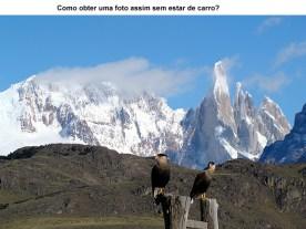 Gaviões, Patagônia Andina