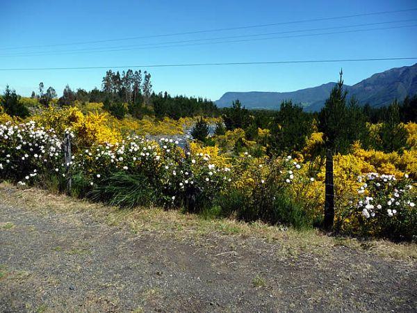 Pucón, Chile, na primavera