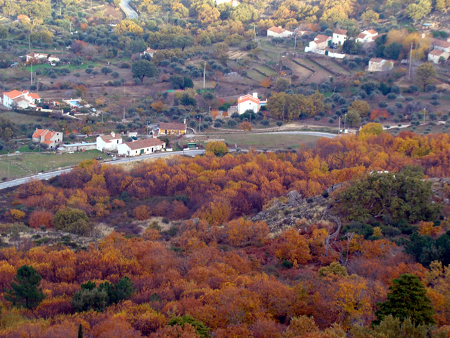 Outono no Alentejo, Portugal