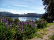 Primavera na Patagônia Argentina