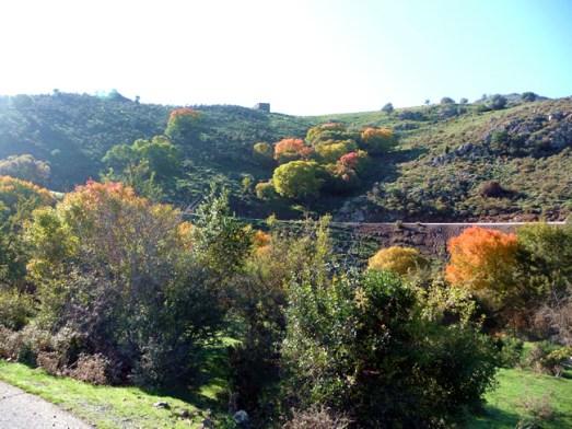 Córsega - de Cavi a St-Laurent, as montanhas no outono