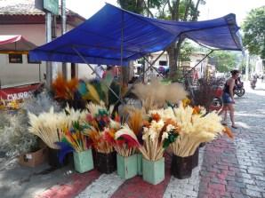 Flores secas, Embú das Artes