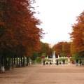 Paris, as cores do outono