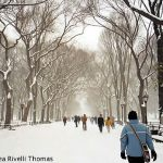Central Park, New York, inverno