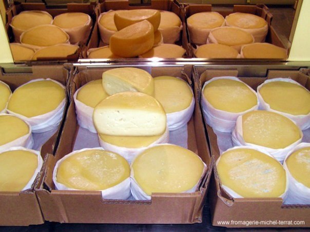 Os queijos portugueses