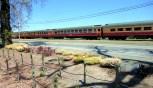 Trem de Napa Valley, California CCBY