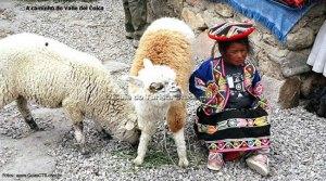 Menina índia, entre Arequipa e Chivay, Peru