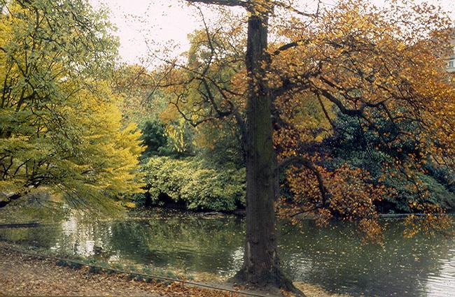 Paris, parque de Montsouris no outono