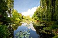 Les Nymphéas, Jardim de Claude Monet, Giverny Foto - Mat's eye CCBY