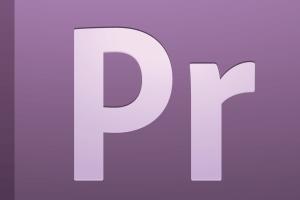 Adobe Premiere Pro CS5 manual pdf image vector images curso de diseño online