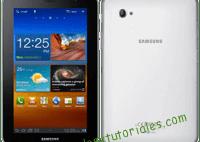 Samsung Galaxy Tab 2 P3100 Manual de usuario en PDF Español