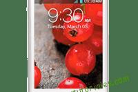 LG Optimus L3 II Manual de usuario PDF español