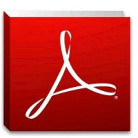 Adobe Reader X User Manual PDF