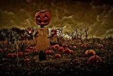 Halloween Composing
