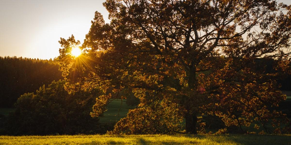 Herbst am Baderbichl nahe Tutzing