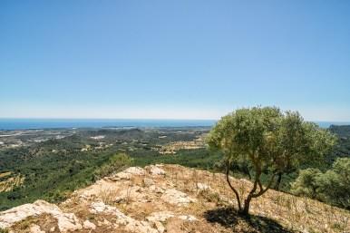 Mallorca - Felanitx