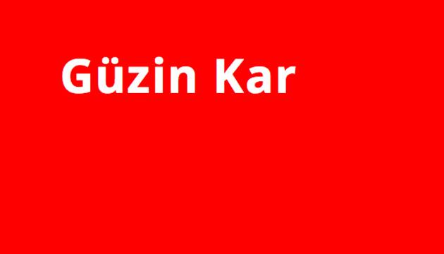 Webdesign für Güzin Kar – Beitragsbild