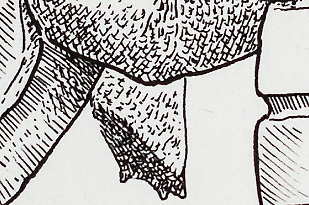 Illustration mit Tuschezeichner – Schildkröte mit Handgranate, Detail Bein