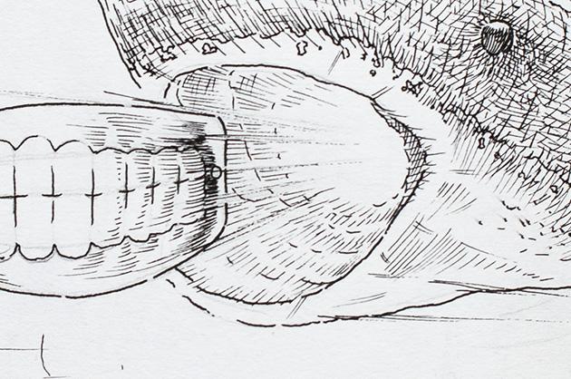 Detail der Skizze mit einem Hai der eine Zahnprothese jagt oder ausspuckt – Ausschnitt zwischen dem Hai-Mund und der Zahnprothese