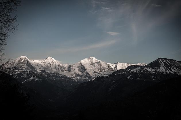 Die Bergkette mit Eiger, Mönch und Jungfrau im Abendlicht.
