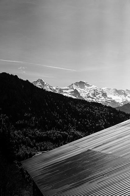 Wellblech-Dach eines Chalets; im Hintergrund ein Hügel und der Berg «Jungfrau»