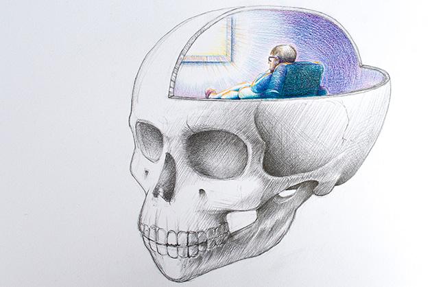 Schädel Illustration, Gesamtansicht