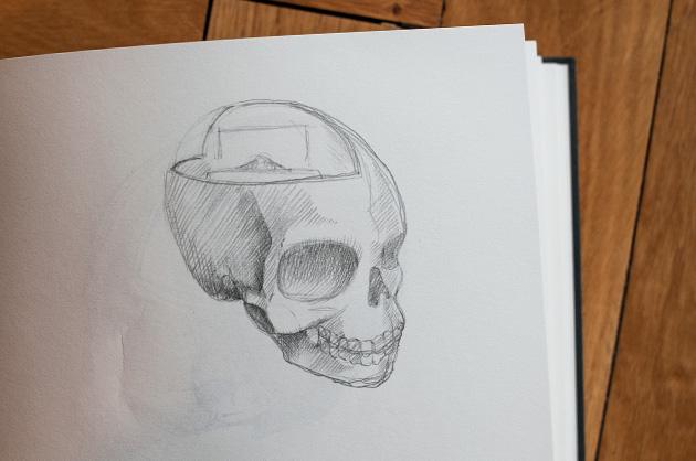 Bleistift-Skizze von einem menschlichen Schädel