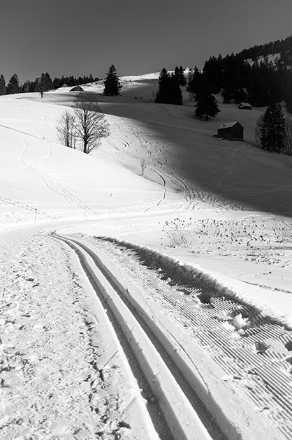 Schneelandschaft beim Schwendisee