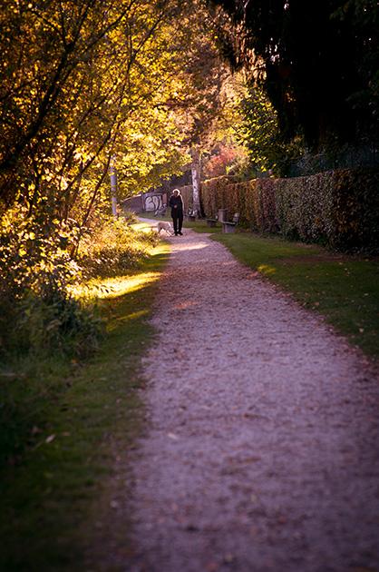 Ein Spaziergänger mit seinem Hund auf dem Uferweg am Egelsee