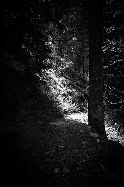 Lichtstrahl auf dem Wanderweg zwischen der Griesalp und dem Tschingelsee.