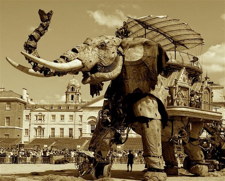 Historia elefante2