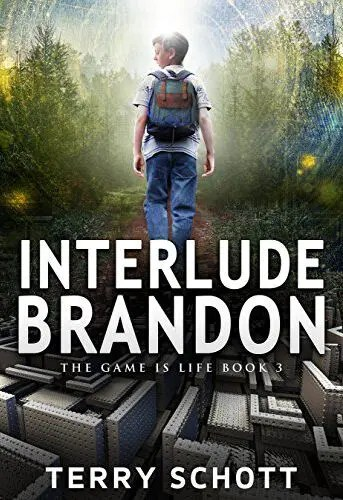 Interlude-Brandon (The Game is Life Book 3) by Terry Schott