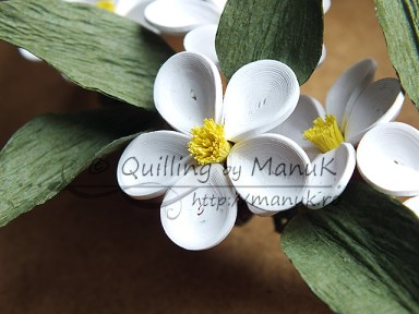 Quilled Apple Blossom Flower