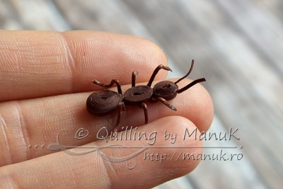 Quilled Ant
