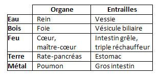 elements-organes-entrailles