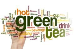 42511919_green