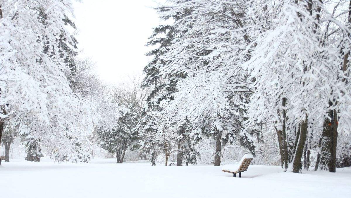How to talk about the weather in English How to Talk about Snowy Weather in English