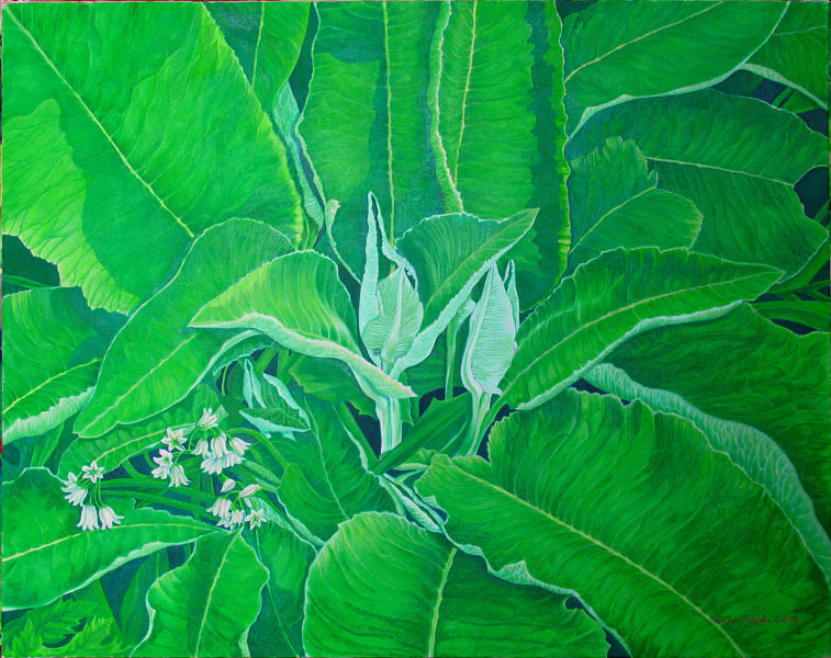"Green Ellecampane 46"" x 37"" (1170 x 940mm)"