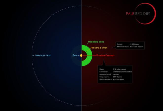 his infographic compares the orbit of the planet around P roxima Centauri (Proxima b) with the same region of the Solar System. Proxima Centauri is smaller and cooler than t he Sun and the planet orbits much closer to its star than Mercury. As a result it lies wel l within the habitable zone, where liquid water can exist on the planet ' s surface. Credit: ESO/M. Kornmesser/G. Coleman