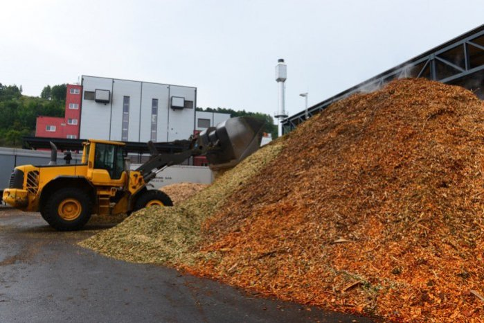 biomasa-elektraren-tasr