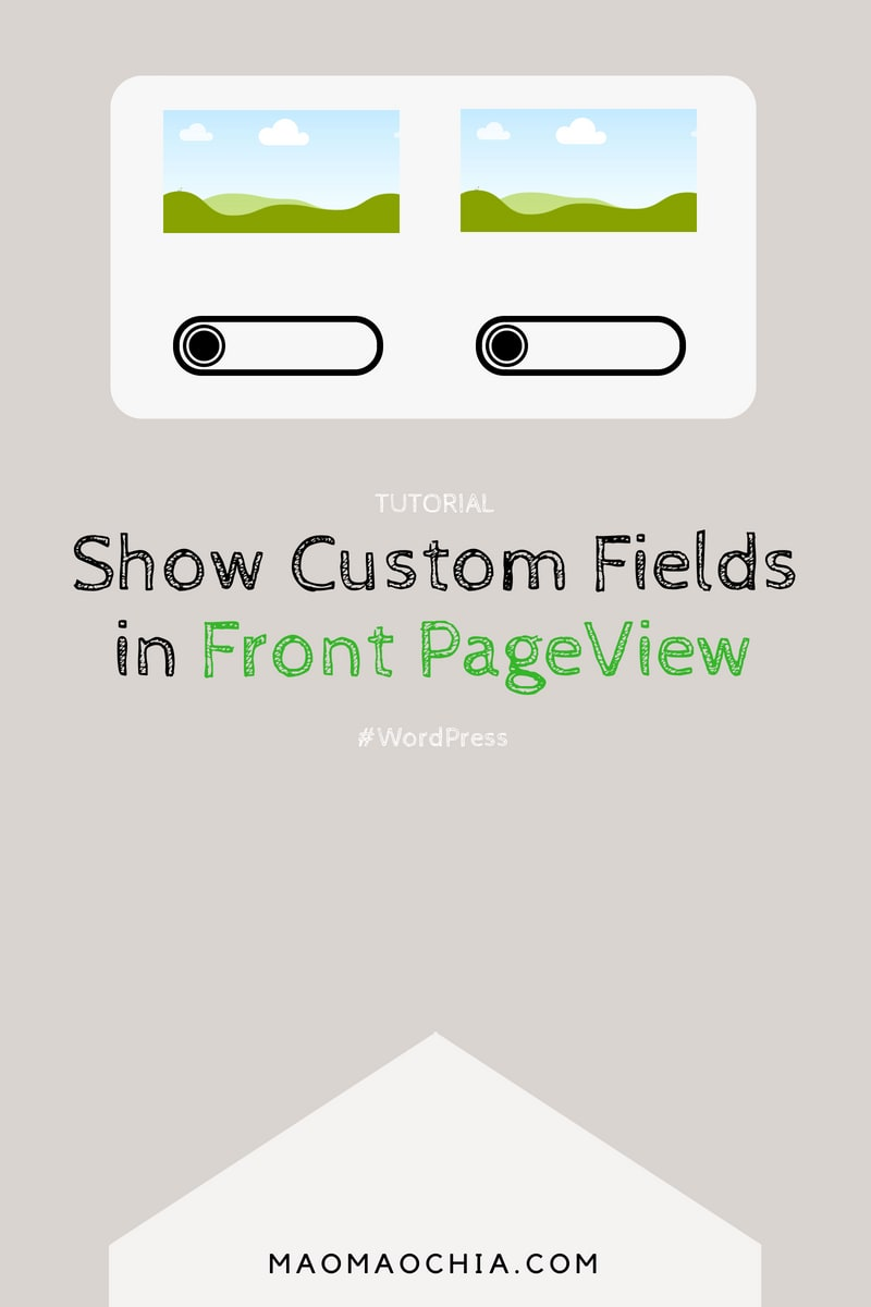 How to Get Custom Field Value in WordPress (Display WordPress Custom Fields)