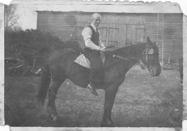 Siebert Jan - Organista na parafialnym koniu