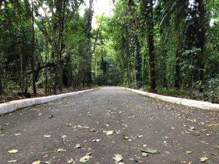 parque do ingá em Maringá